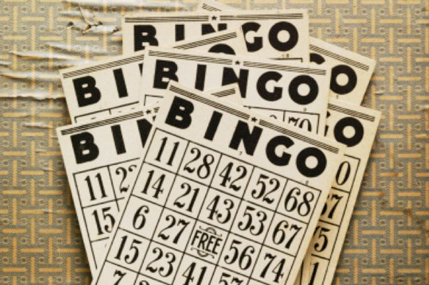 Monthly Bingo Night w/ Tommy McTrivia